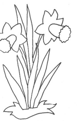 Malvorlagen Blumen Mamas And More Von Mamas Für Mamas