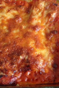 vegetarische Käse-Cannelloni